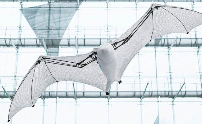 BionicFlyingFox – новий літаючий робот від компанії Festo
