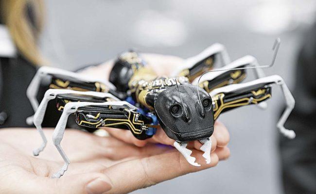 BionicANT – фантастичний робот-мураха від компанії Festo